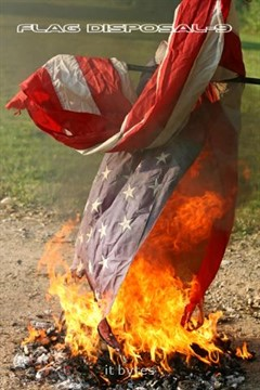 Disposal by fire is the proper way to get rid of worn United States Flag.  A disposal ceremony was held Thursday evening near the Galesburg City Hall.